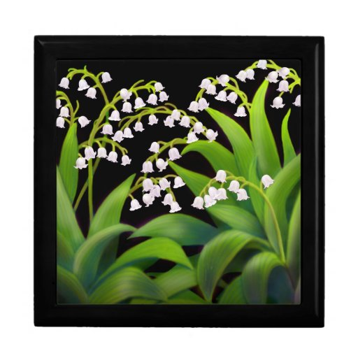 Wild Lily of the Valley Flowers Gift Box