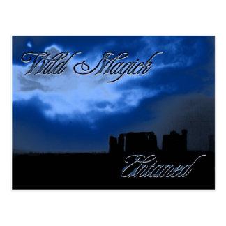Wild Magick Postcard