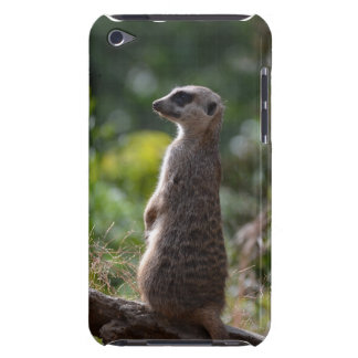 Wild Meerkat Barely There iPod Cover