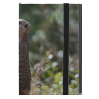 Wild Meerkat Case For iPad Mini