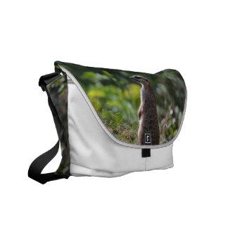 Wild Meerkat Courier Bag
