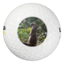 Wild Meerkat Golf Balls