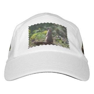 Wild Meerkat Hat