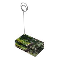 Wild Meerkat Place Card Holder