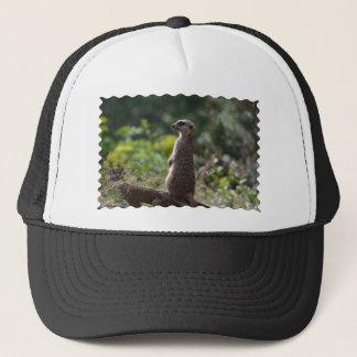Wild Meerkat Trucker Hat