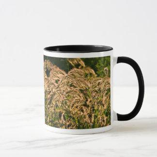 Wild Millet (Panicum Sp.) Growing In Wetland Mug