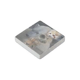 wild Mix 1 Stone Magnet