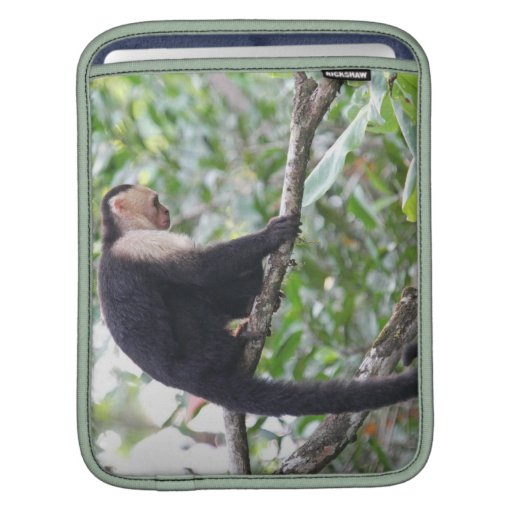 Wild Monkey Picture Sleeve For iPads