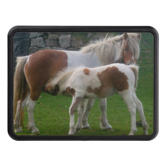Wild Moorland Ponies Bodmin Moor Cornwall England Tow Hitch Cover