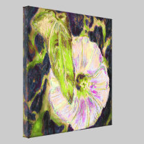 Wild Morning Glory by Alexandra Cook canvas prints
