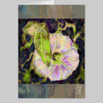 Wild Morning Glory by Alexandra Cook cards