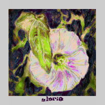 Wild Morning Glory by Alexandra Cook t-shirts