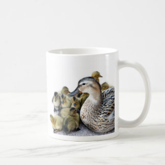 Wild Mother Duck and Ducklings Classic White Coffee Mug