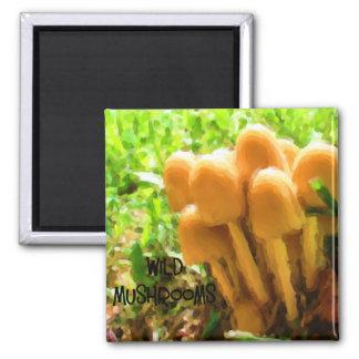 Wild Mushroom 2 Inch Square Magnet