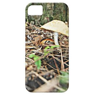 Wild Mushroom iPhone 5 Case