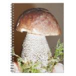 wild mushroom note books