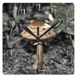 Wild Mushroom (Toadstool) Square Wall Clock