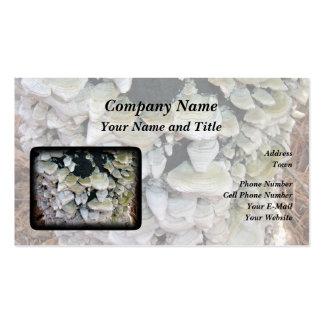 Mushroom business cards templates zazzle - Wild mushrooms business ideas ...