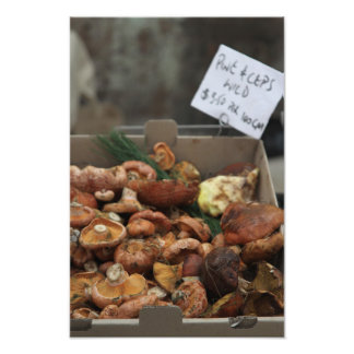Wild Mushrooms For Sale Photo Print