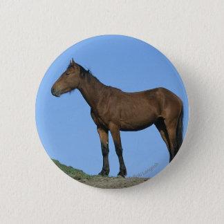 Wild Mustang Horse Button