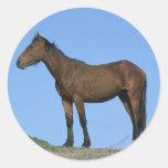 Wild Mustang Horse Classic Round Sticker