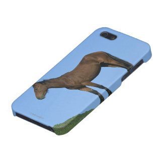 Wild Mustang Horse Cover For iPhone SE/5/5s