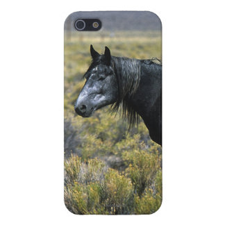 Wild Mustang Horse in the Desert Cover For iPhone SE/5/5s