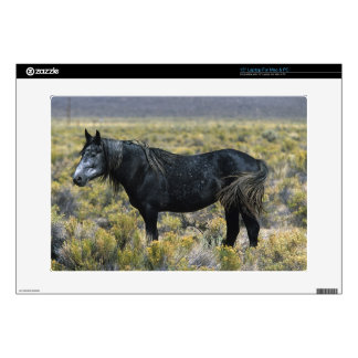 "Wild Mustang Horse in the Desert Decal For 15"" Laptop"