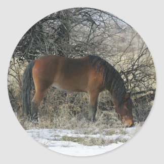 Wild Mustang Horse in the Snow 1 Classic Round Sticker