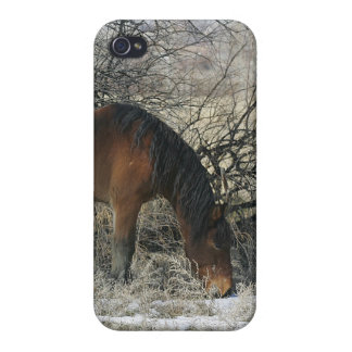 Wild Mustang Horse in the Snow 1 iPhone 4/4S Cover