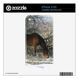 Wild Mustang Horse in the Snow 1 Decal For The iPhone 4