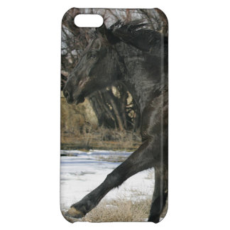 Wild Mustang Horse in the Snow 2 iPhone 5C Covers
