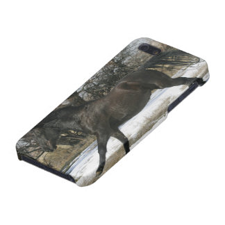 Wild Mustang Horse in the Snow 2 iPhone SE/5/5s Cover