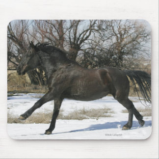 Wild Mustang Horse in the Snow 2 Mouse Pad