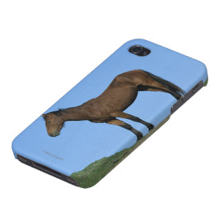 Wild Mustang Horse iPhone 4 Case