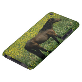 Wild Mustang Horse Standing in Flowers Barely There iPod Case