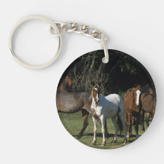 Wild Mustang Horses 1 Keychain