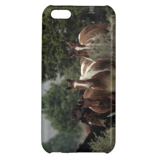 Wild Mustang Horses 2 Case For iPhone 5C