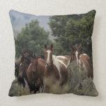 Wild Mustang Horses 2 Throw Pillows
