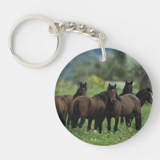 Wild Mustang Horses 3 Keychain