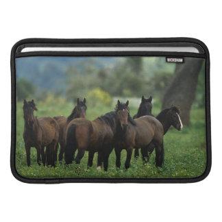 Wild Mustang Horses 3 Sleeve For MacBook Air