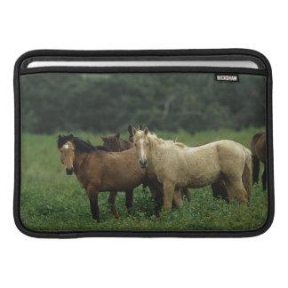 Wild Mustang Horses 4 MacBook Air Sleeve