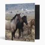 Wild Mustang Horses 5 3 Ring Binder