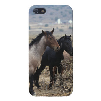 Wild Mustang Horses 5 Cover For iPhone SE/5/5s