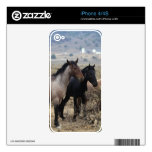 Wild Mustang Horses 5 Decal For iPhone 4
