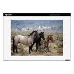 Wild Mustang Horses 5 Skins For Laptops