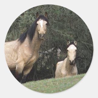 Wild Mustang Horses 6 Classic Round Sticker