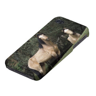 Wild Mustang Horses 6 iPhone 4/4S Cases