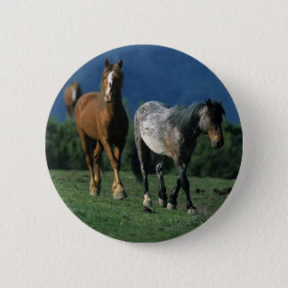 Wild Mustang Horses Button