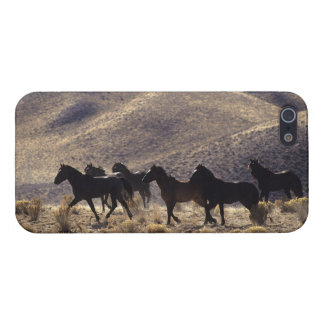 Wild Mustang Horses in the Desert 1 iPhone SE/5/5s Cover